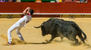 Dodging a bull as a metaphor for the entrepreneurial mindset